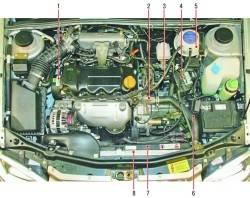 Расположение элементов системы охлаждения