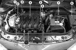 Расположение элементов системы впрыска в подкапотном пространстве автомобиля Megane II с двигателем K4М