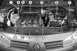 Расположение элементов системы впрыска в подкапотном пространстве автомобиля Megane II с двигателем F4R