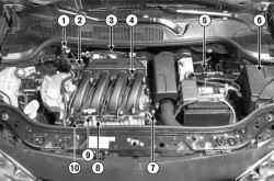 Расположение элементов системы впрыска в подкапотном пространстве автомобиля Megane II с двигателем K4J