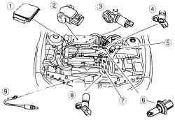 Расположение в моторном отсеке некоторых узлов 16-клапанного двигателя