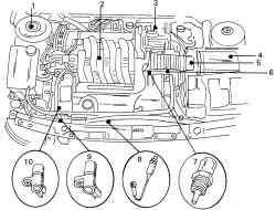 Расположение в моторном отсеке некоторых узлов двигателя V6