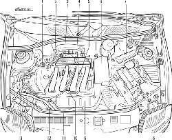 Расположение элементов системы впрыска топлива в моторном отсеке